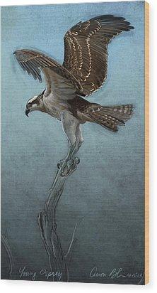 Osprey Wood Print by Aaron Blaise