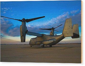Osprey Sunrise Series 1 Of 4 Wood Print by Ricky Barnard