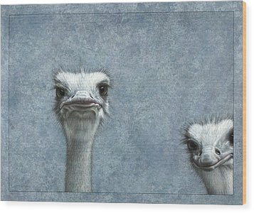 Ostriches Wood Print by James W Johnson