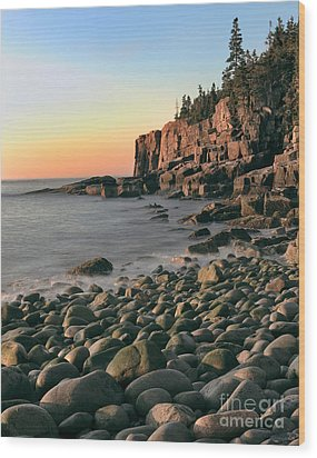 Otter Cliffs Wood Print by Jerry Fornarotto