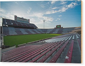 Owen Field  Wood Print by Nathan Hillis