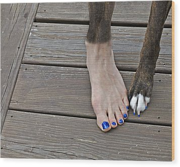 Painted Toenails And Dog Claws Wood Print by Harold Bonacquist