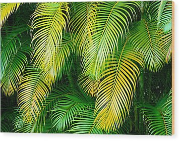 Palm Leaves In Green And Gold Wood Print by Karon Melillo DeVega