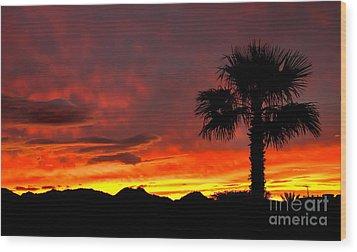 Palm Tree Silhouette Wood Print by Robert Bales