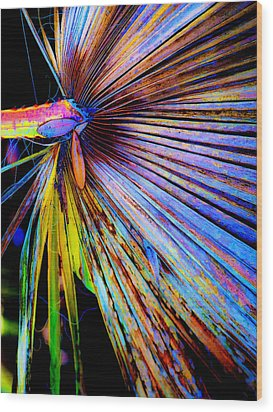 Palmetto Gone Wild Wood Print by Stephen Anderson