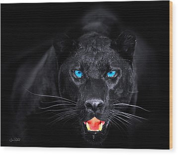 Panther Wood Print by Jean raphael Fischer