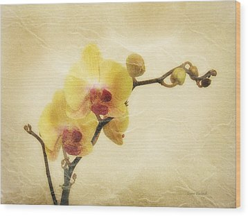 Paper Flowers Wood Print by Donna Blackhall