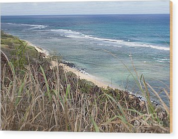 Paradise Overlook Wood Print by Suzanne Luft