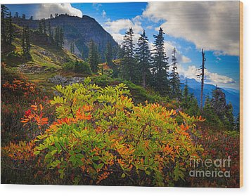Park Butte Fall Color Wood Print by Inge Johnsson