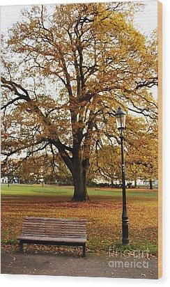 Park Life Wood Print by Terri Waters