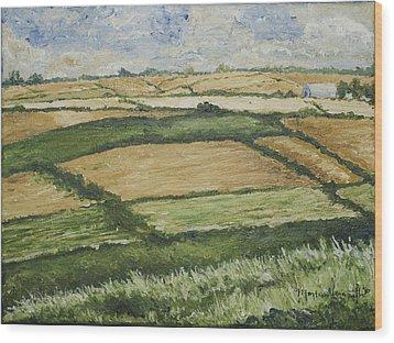 Patchwork Fields Wood Print by Monica Veraguth