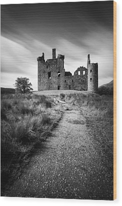Path To Kilchurn Castle Wood Print by Dave Bowman