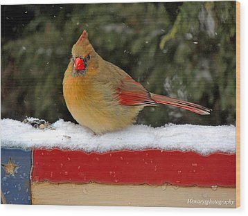 Patriotic Cardinal Wood Print by Mary Williamson