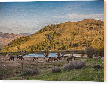 Patterson Mountain Afternoon View Wood Print by Omaste Witkowski