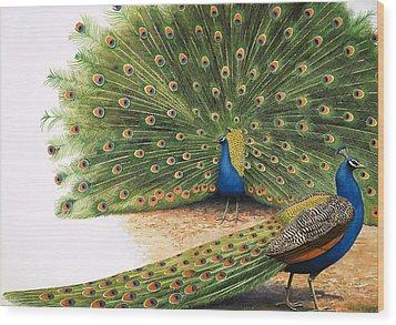 Peacocks Wood Print by RB Davis