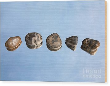Pebbles And Sky Reflection Wood Print by Natalie Kinnear