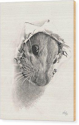 Peeckaboo Wood Print by Bianca Ferrando