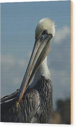 Pelican Profile Wood Print by Ernie Echols