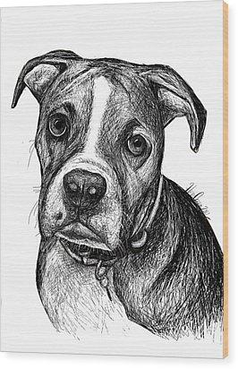 Pet Portraits Boxer Wood Print by Heidi Creed