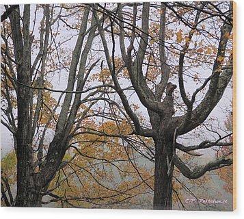 Pheonix In The Fall Wood Print by Carolyn Postelwait
