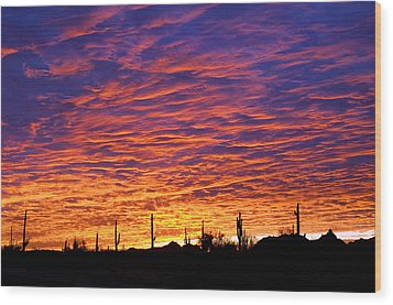 Phoenix Sunrise Wood Print by Jill Reger