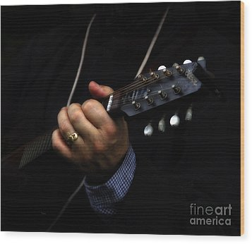 Picking On Gibson Wood Print by Steven  Digman