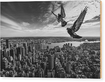 Pigeons On The Empire State Building Wood Print by Sergiosousa
