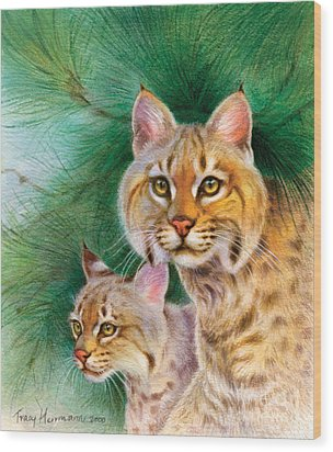 Pinewoods Bobcat Wood Print by Tracy Herrmann
