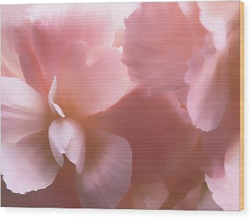 Pink Begonia Floral Wood Print by Jennie Marie Schell