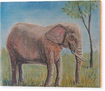 Pink Elephant Wood Print by Richard Goohs