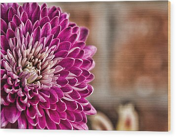 Pink Mum Wood Print by Lana Trussell
