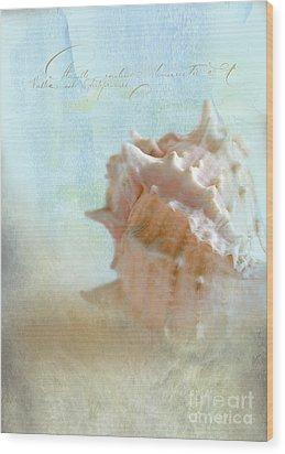Pink Murex Seashell Wood Print by Betty LaRue
