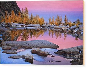 Pink Tarn Wood Print by Inge Johnsson
