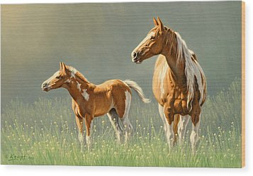 Pinto Mare And Colt Wood Print by Paul Krapf