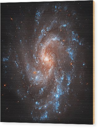 Pinwheel Galaxy Wood Print by Jennifer Rondinelli Reilly - Fine Art Photography