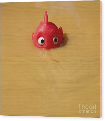 Plastic Fish In Some Polluted Water. Wood Print by Bernard Jaubert