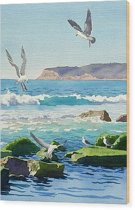 Point Loma Rocks Waves And Seagulls Wood Print by Mary Helmreich