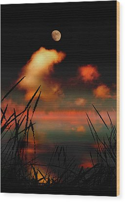 Pointing At The Moon Wood Print by Mal Bray