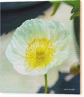 Poppy Series - Beside The Sidewalk Wood Print by Moon Stumpp