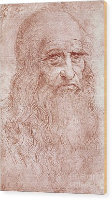 Portrait Of A Bearded Man Wood Print by Leonardo da Vinci