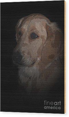 Portrait Of A Golden Wood Print by Bianca Nadeau