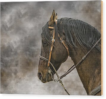 Portrait Of A Rope Horse Wood Print by Jana Thompson