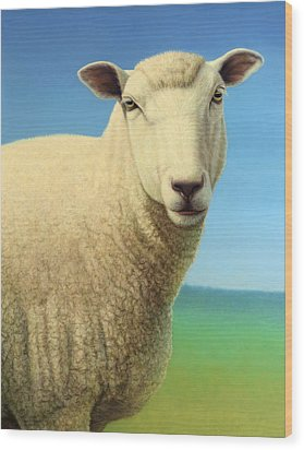 Portrait Of A Sheep Wood Print by James W Johnson