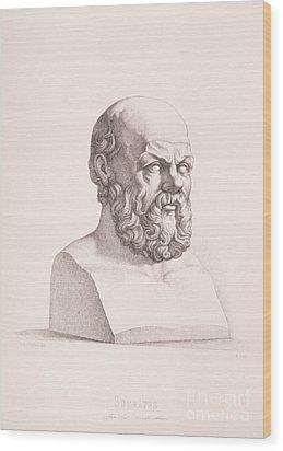 Portrait Of Socrates Wood Print by CC Perkins