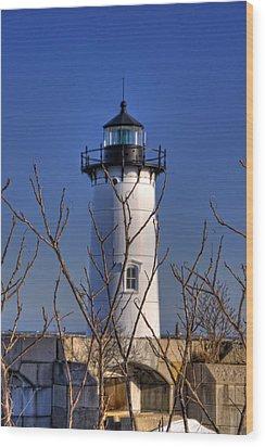 Portsmouth Harbor Light 3 Wood Print by Joann Vitali