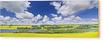 Prairie Panorama In Saskatchewan Wood Print by Elena Elisseeva
