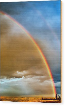 Prairie Rainbow Wood Print by Ellen Heaverlo