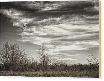 Prairie Winter Sky Wood Print by Joan Carroll