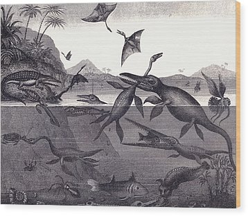 Prehistoric Animals Of The Lias Group Wood Print by English School