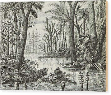 Wood Print featuring the photograph Prehistoric Flora, Carboniferous by British Library
